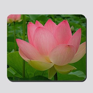 Sacred Lotus Flower Mousepad